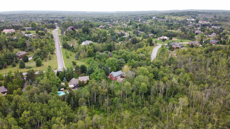Neighbourhood Spotlight: Milton